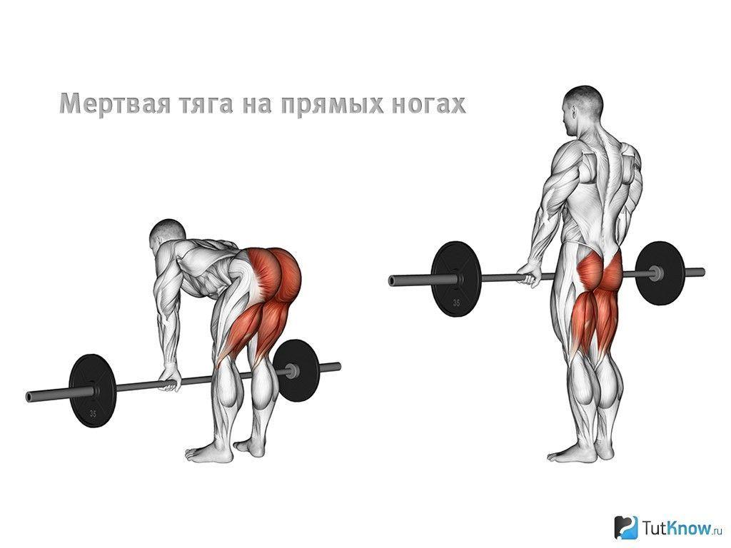 становая тяга, мышцы, ягодицы, трапеция, квадрицепсы, предплечья, широчайшие, ошибки